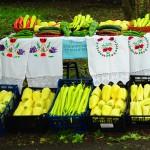 đački poljoprivredni sajam